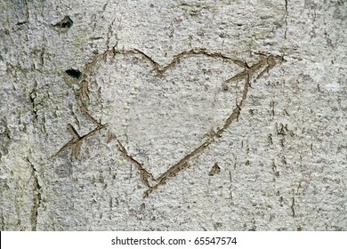 Love, carved heart