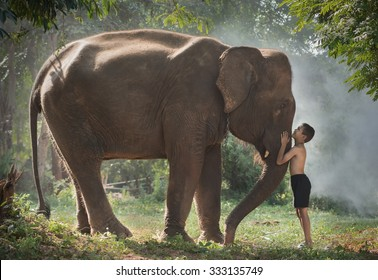 Love of children with elephant