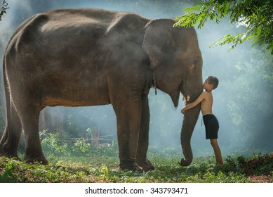 Love of children with his elephants
