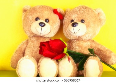 Love concept of couple teddy bear with red rose  for valentines day and wedding