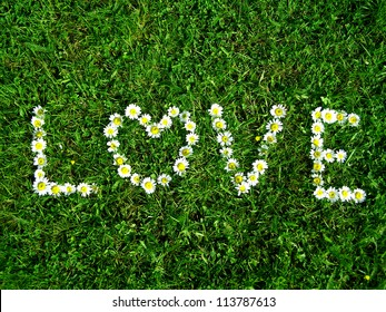 Love - flowers text on the grass