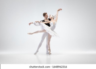 Love. Graceful classic ballet dancers dancing isolated on white studio background. Couple in tender white clothes like a white swan characters. The grace, artist, movement, action and motion concept.