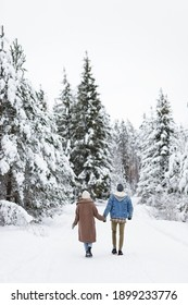 love, happiness and relationship concept - back view of couple in love walking in winter forest