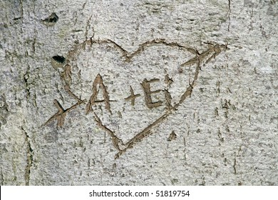 love, heart carved into a tree