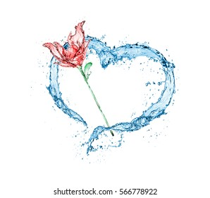 love heart water splash isolate on white background.