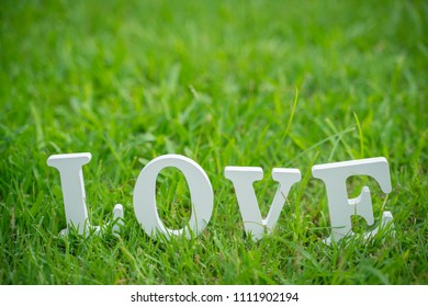 Love letter is placed Backyard and green grass