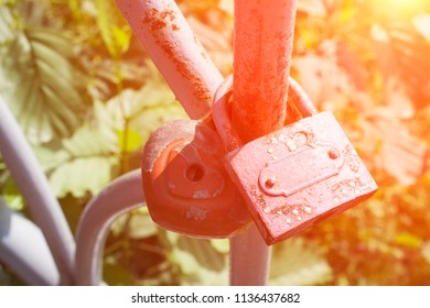 love locks close up
