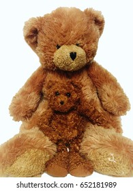 Love is the mother of love forever - Two bear embrace hugging each other.