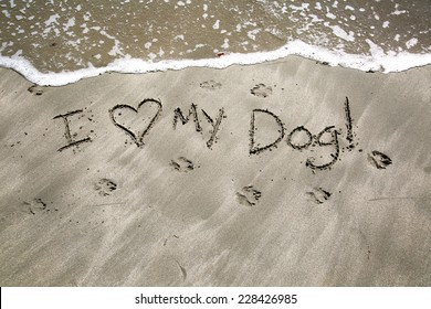 I love my dog, a message written in the sand at the beach.