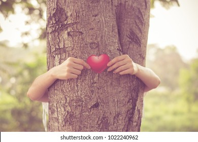 Love nature concept, woman give a hug behind tree,Tree hugging. Close-up of hands hugging tree.