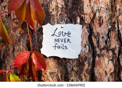 Love never fails - lettering on beautiful background on nature, biblical verce and religion concept