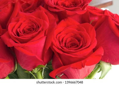 love romance roses flowers passion gift greeting