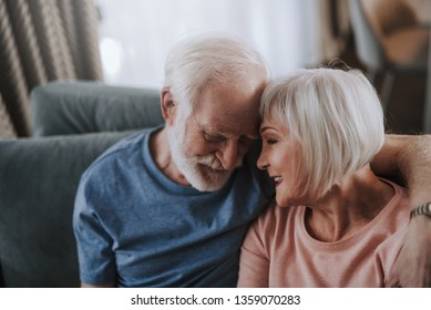 Love and tendance in any age. Close up portrait of happy smiling gray haired man and woman touching their foreheads with tender while enjoying time together on sofa