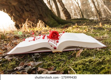 love theme - open book with rose on the moss in the forest at sunset