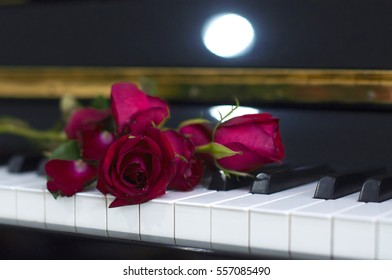 I Love You Dad: Red rose on piano keyboard blurred background for various events: anniversary, celebration, love, wedding, surprised gift, birthday party, graduation, engagement, party and sharing