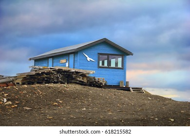Lovely arctic view - blue colored wooden house with white seagull on the barren tundra ground at background of dramatic cloud sky in Longyearbyen, Spitsbergen (Svalbard island), Norway, Greenland sea
