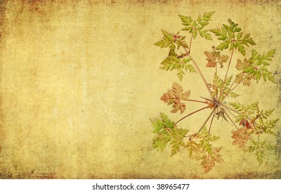 lovely background image with floral elements. useful design element.