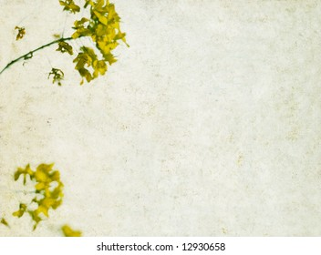 lovely background image with interesting texture, yellow floral elements and plenty of space for text