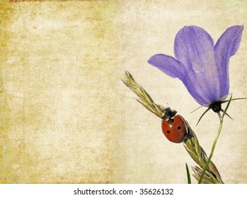 lovely background image with ladybird and floral elements. very useful design element.