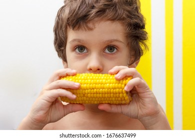 lovely curly boy eat a cob of boiled corn, GMO free