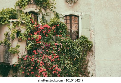Lovely french town glimpse with windows and rose garden
