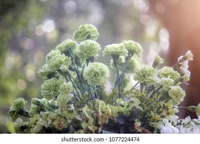 Lovely Fresh Bouquet Green Flower or Carnation flower with blur bokeh green and little bit white make it look very lovely. Selected focus and Soft focus for Smooth Photo Background,Soft Vintage Tone.