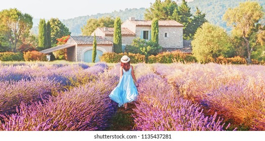 Lovely girl dressing in blue boho chic dress and straw hat walking  amazing blooming field of lavender in Provence, France. Panoramic view. Post production photo in traditional Provencal pastel tones.