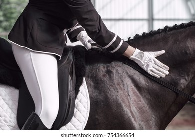 Lovely girl jockey sitting in the saddle on a horse shooting close-up. She slams the horse around her neck. A pedigree horse for equestrian sport.