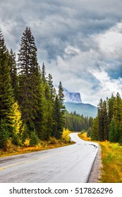 """Lovely """"Golden Autumn"""" in Banff National Park. Highway among orange grass and evergreen trees. Canada Rockies"""
