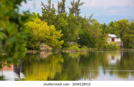Lovely green trees reflecting on a water with a summer house