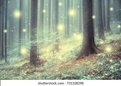 Lovely magic colored blurred foggy forest trees with illustrated abstract bokeh light.