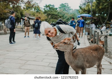 Lovely middle-aged woman playing with a deer of Nara. Nara prefecture natural park around the Todai-ji temple. Photography of tourism in Japan. Lifestyle.