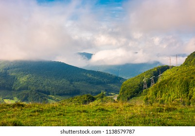 lovely mountainous countryside in autumn. forest on a grassy hillside under the beautiful cloudy sky. wonderful place for hike or a picnic