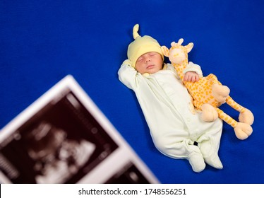 lovely newborn sleeping on a blue blanket. Sweet boy in pajamas taking a nap with toy giraffe. Ultrasound image