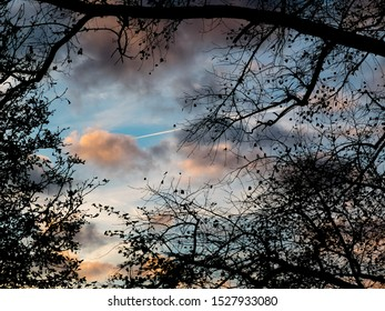 A lovely picture of the sky shot in the Amsterdam Vondelpark