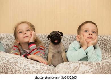 Lovely pug puppy and cute kids, watch TV