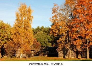 Lovely rural wooden houses among the autumn trees