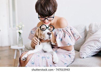 Lovely tanned woman in elegant glasses fooling around with beagle dog while posing on blur background. Indoor portrait of pretty lady in romantic dress and her little friend looking away.