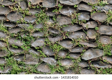Lovely texture of an outdoor floor made of asymmetric rocks / tiles. In between those there is some green grass growing. Beautiful earthy, natural tones and gorgeous details. Closeup color image.