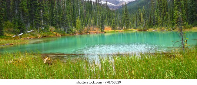 Lovely turquoise colored pond in Yoho National Park of British Columbia