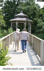 Lovely walk between aging daughter and elderly mother.  Simple strides of love.
