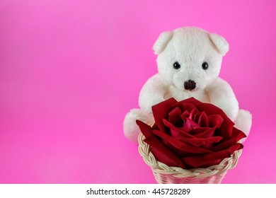 Lovely white teddy bear and beautiful rose on pink background