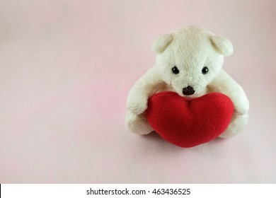 Lovely white teddy bear with red heart on pink background, fall in love teddy bear.