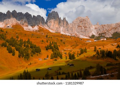 Lovely yellow pasture in sunlight. Unusual and gorgeous scene. Location place Dolomiti, Compaccio village, Seiser Alm or Alpe di Siusi, Province of Bolzano - South Tyrol, Italy, Europe. Beauty world.