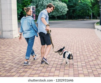 Lovely young hipster couple walking with dog during summer sunset. they wear jeans clothes. modern youth