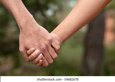 Lovers couple holding hands in a forest (summer/spring)