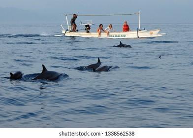 Lovina,Singaraja,Bali Watching dolphins at Lovina Bali. 01/28/2011