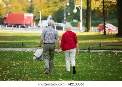 A loving elderly couple is walking in the park. Senior people holding hands. Back view.