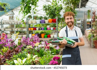 Loving gardening. Shot of a happy bearded male florist smiling to the camera holding two packs of fertilizer in his garden center