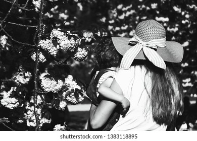 Loving mother gently holding her little child (back view; unrecognizable) in blooming cherry garden, showing nature beauty during Hanami celebration. Black white photo.